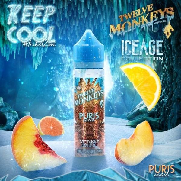 Twelve Monkeys Puris Iced 50ml+